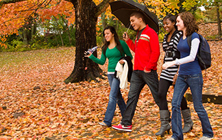 Students walking through fall leaves