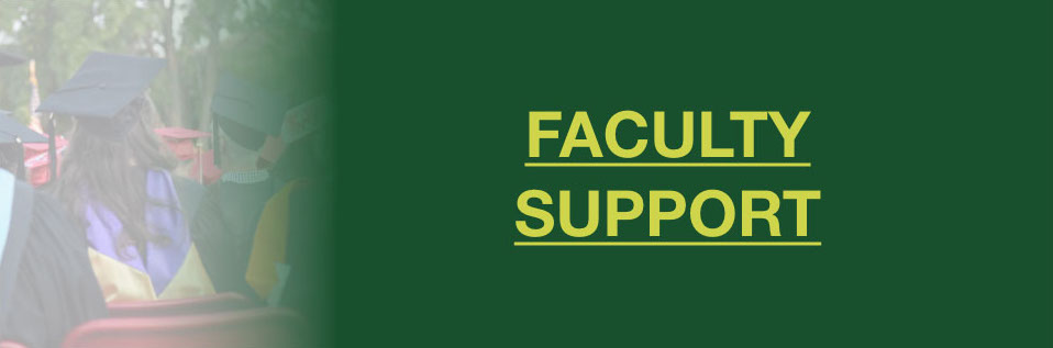 Faculty Support Button